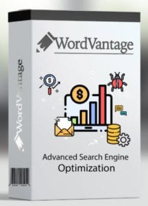 Can I Improve my SEO with WordVantage - wordvantage box