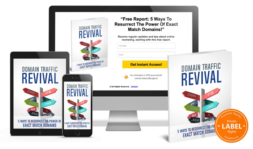 Domain Traffic Revival - product