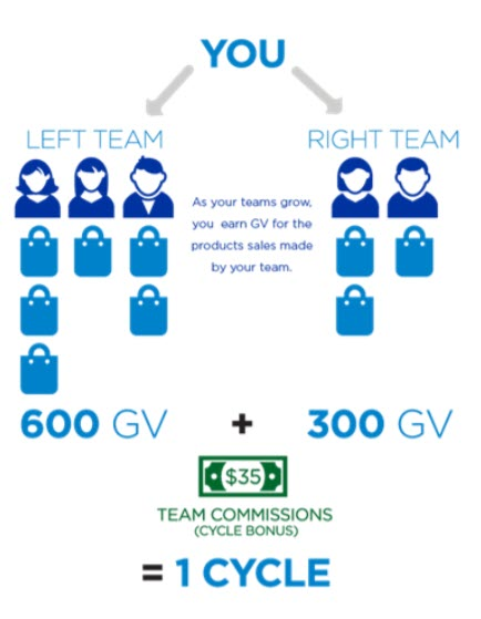 Jeunesse Global MLM Review - team commissions