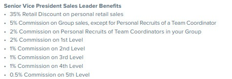 Norwex MLM Review - Personal Recruit commissions
