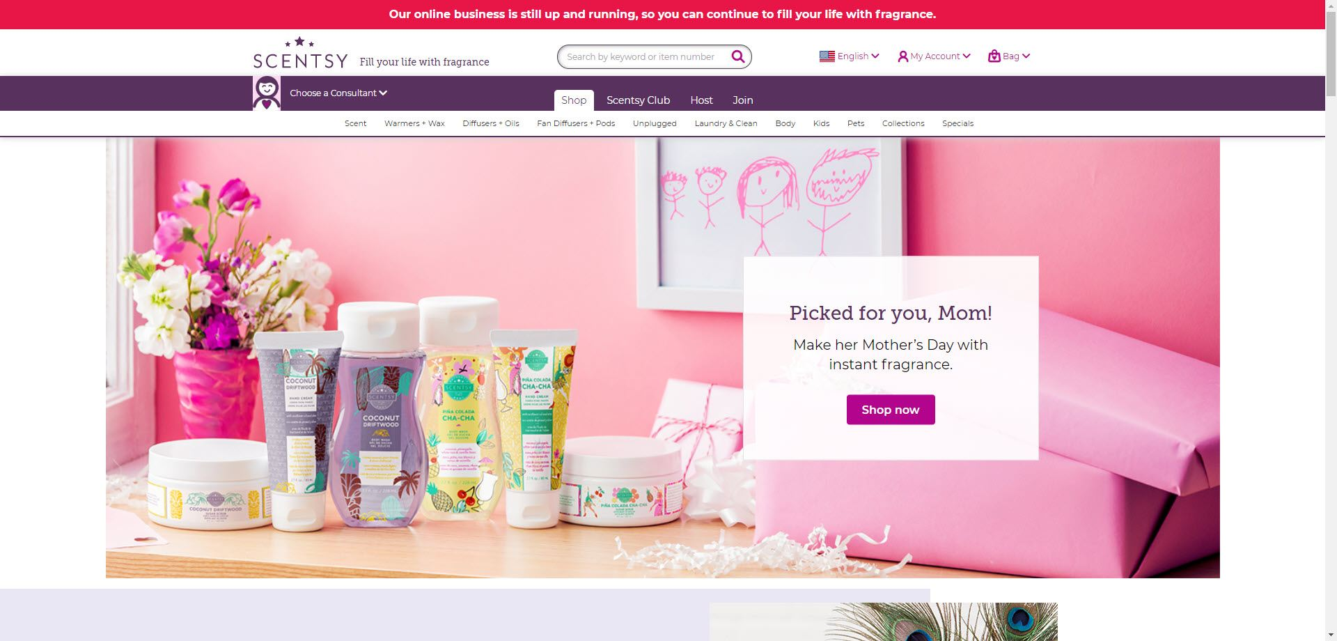 Scentsy MLM Review - Home