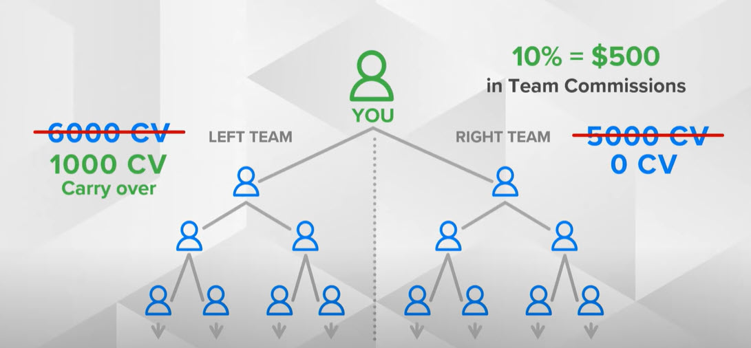 Asea MLM Review - team commissions