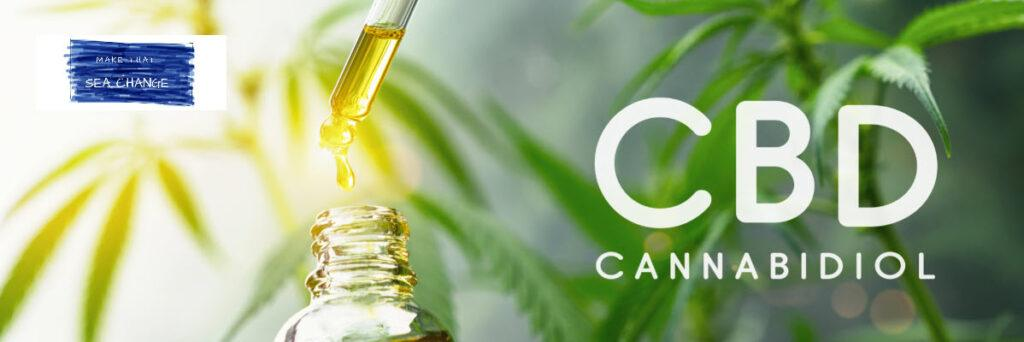Monetize a CBD Oil blog - Header