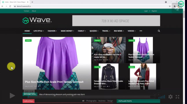 wave review - website example