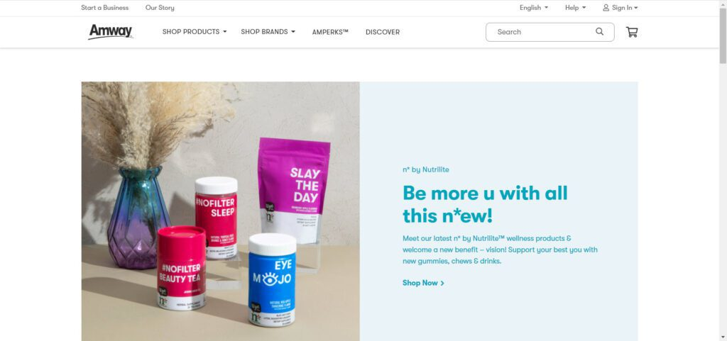 Amway MLM Review- Home